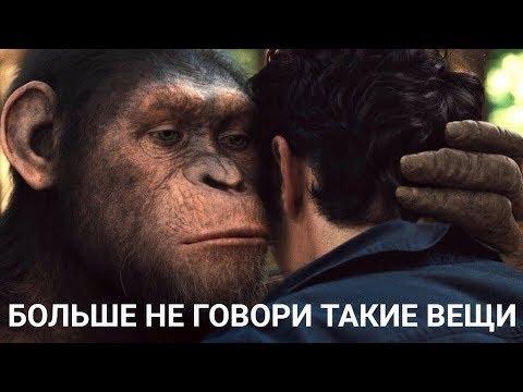 5 МИНУТ ПРИКОЛОВ ДО СЛЕЗ 2020. Лучшие смешные русские приколы 2020 года