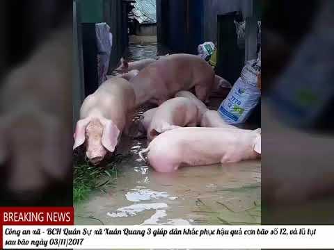 Công an xã - BCH Quân Sự xã Xuân Quang 3, huyện Đồng Xuân,  tỉnh Phú Yên giúp dân ngày 03/11/2017