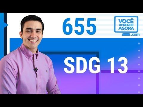 AULA DE INGLÊS 655 SDG 13: Take urgent action to combat climate change