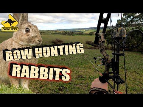 BOW HUNTING RABBITS - South Australia