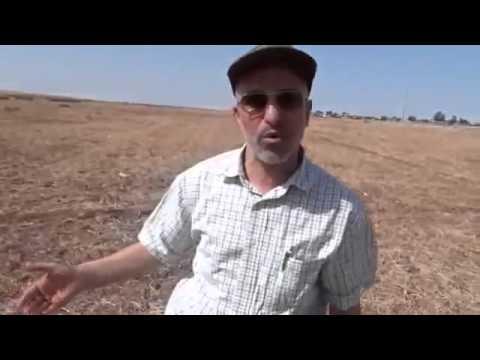Morocco, on farm implementation
