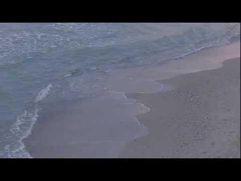 на позах откровенных нудисты фото пляже в