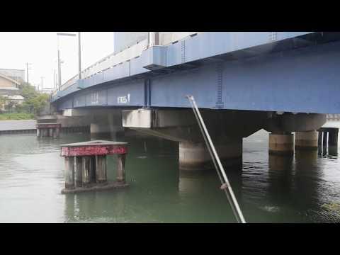 新木場公園「釣りボウズ」東京都11月