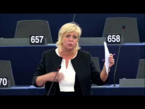 Hilde Vautmans 03 Jul 2017 plenary speech on Private security companies
