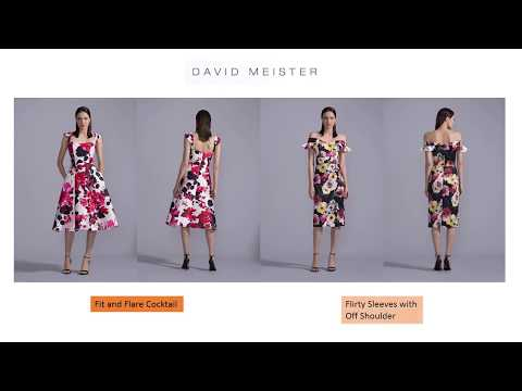 David Meister 2019 - Women Dresses & Gowns - Fashion Video