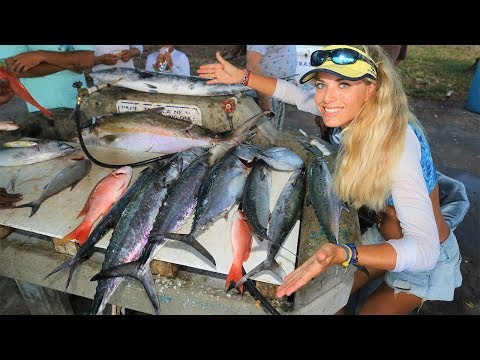 Best MIAMI Deep Sea Drift Boat Fishing