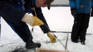 Зимняя ловля в проруби сетями в Финляндии(Ловля сетями - это браконьерство или нет? А вдруг пруд - в собственности? Смотрите, как ловят зимой сетями...., 2016-03-28T18:05:16.000Z)