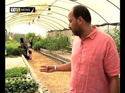 Bustan Aquaponics Farm: New Technique to improve Africulture in Egypt