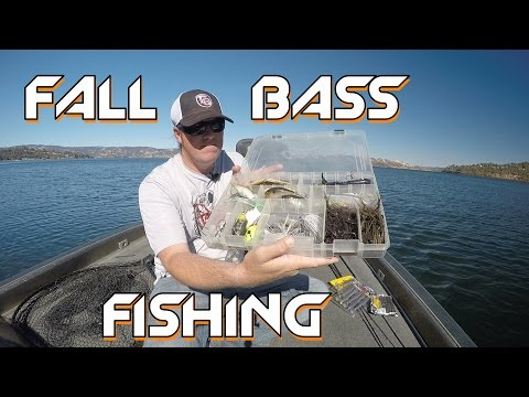 bass-fishing:-best-baits-for-the-fall-transition