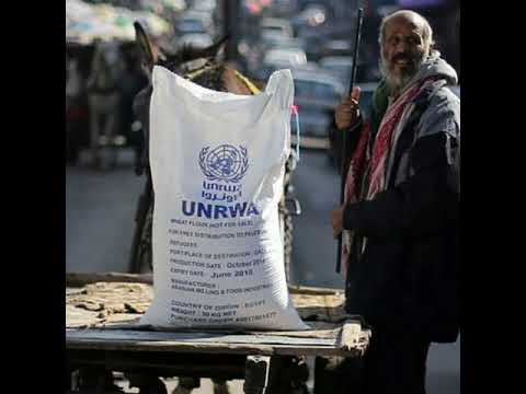 Belgium pledges $23m to UNRWA after US aid cut - NEWS/PALESTINE