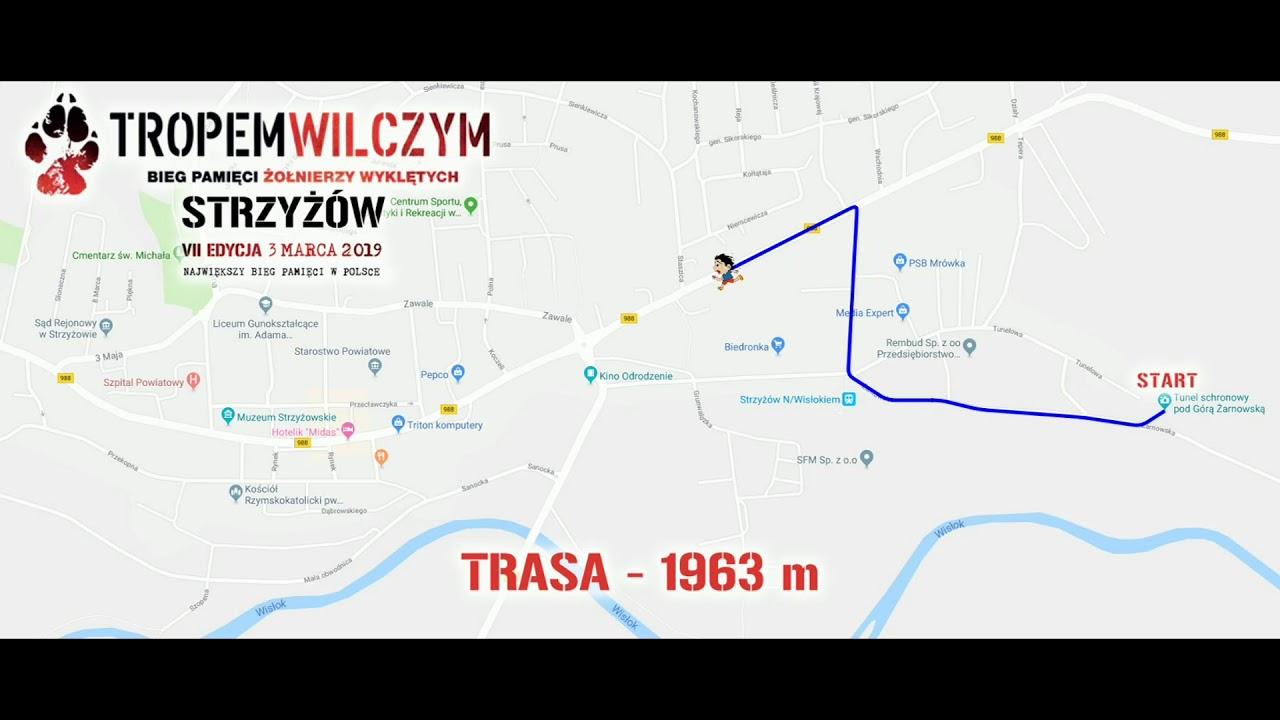 Randki z kobietami i dziewczynami w Lubaczowie binaryoptionstrading23.com