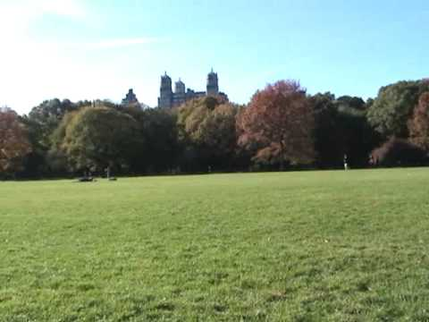 Great Lawn at Central Park