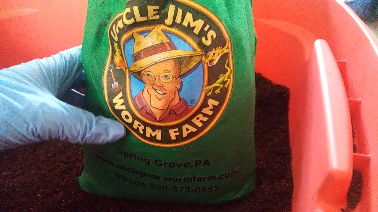 worms are here uncle jim u0027s worm farm youtube