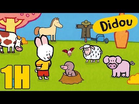 1 heure de Didou, dessine-moi la campagne | Compilation | Dessins animés pour les enfants