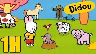 1 heure de Didou - Didou dessine-moi la campagne | Compilation  HD