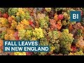 We flew a drone over the changing fall leaves in New England — and the footage is spectacular
