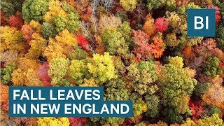 Drone footage of New England