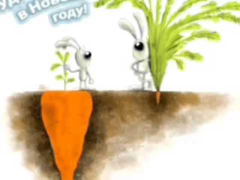 скачать игру заяц и морковка
