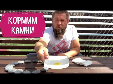 Русские руны на камнях - 2. Кормим камни