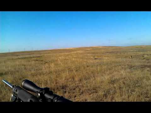 Prairie Dog shooting Faith, SD