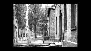 Лагеря смерти: Освенцим, Треблинка, Майданек(Освенцим, Треблинка, Майданек были основаны в Польше, как лагеря смерти. Треблинка (Treblinka) — два концентраци..., 2014-02-26T22:31:56.000Z)