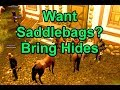 Want Saddlebags? Bring Hides !loa - Legends of Aria Azure
