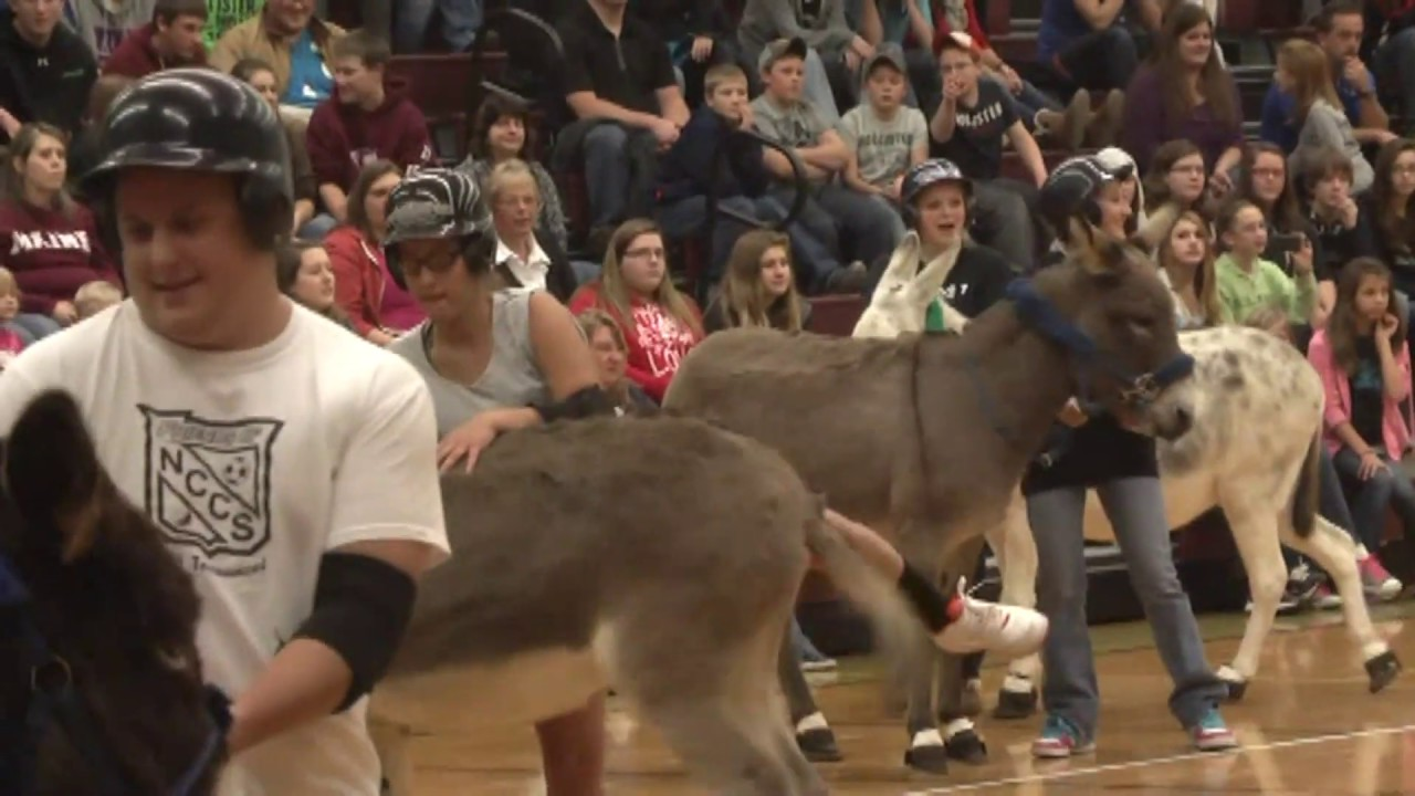 NCCS Donkey Basketball  11-8-12