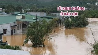 Lũ kinh hoàng ở Bảo Lộc, hàng trăm hộ dân phải sơ tán