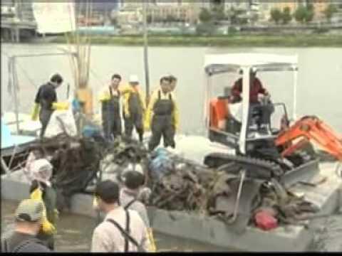 태화강 생태복원 보고서