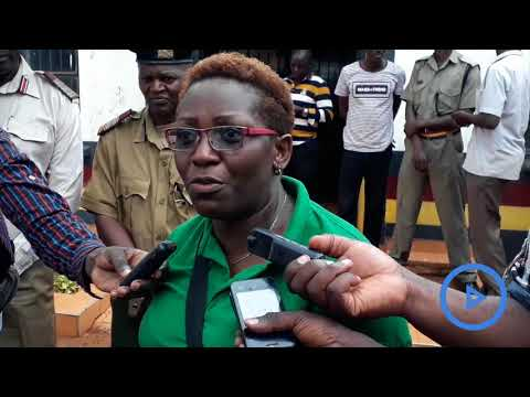 Busia county intensifies war on illicit brews