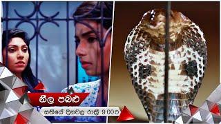 නයි මුගටි ගැටුම් පරයන පූජාගේ නපුරුකම | Neela Pabalu | Sirasa TV Thumbnail