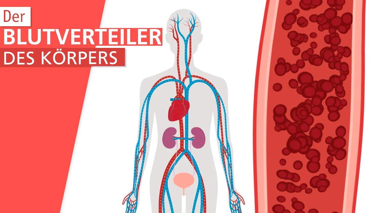 Ab 45 frauen blutdruck Niedriger Blutdruck