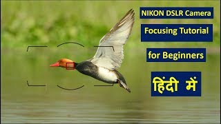 Auto Focus and Manual Focus Tutorial in Hindi. | AF Modes | AF Area Modes | Manual Focus |