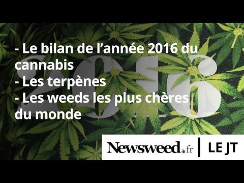 Le JT de Newsweed - #1