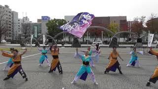 11月26日に三重県四日市市で開催された第13回四日市よさこい祭り やっ...