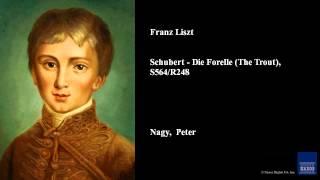 Play Schubert - Die Forelle, S564R248 (2Nd Version)