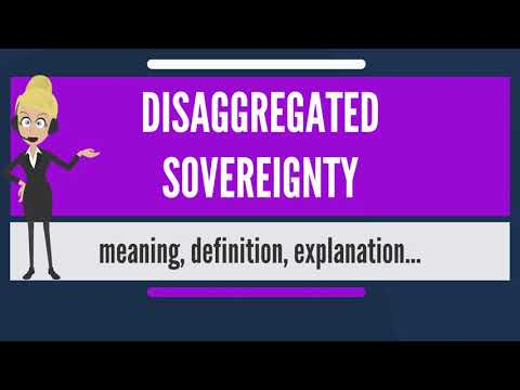 What is DISAGGREGATED SOVEREIGNTY? What does DISAGGREGATED SOVEREIGNTY mean?
