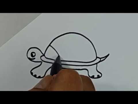 Belajar cara menggambar binatang kura kura dengan mudah - YouTube
