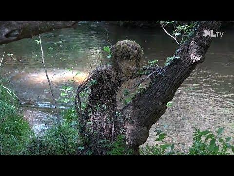 Landes Art, un parcours artistique en forêt à Moustey