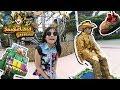 Ellyn Clarissa - Jungle Land Vlog