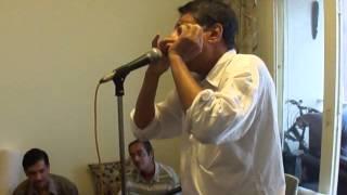 Ye Kaun Chitrakar Hai - on harmonica