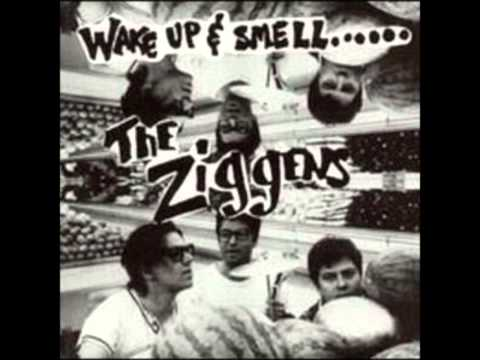 The Ziggens - Surf's Up