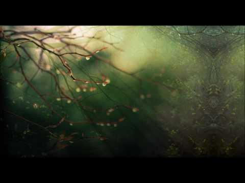 Jahbo (Parvati Records) ⎉ Live Parvati Sweet Sixteen