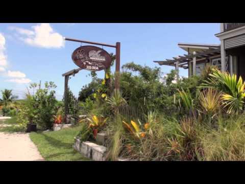 Villa Allamanda Commercial HD