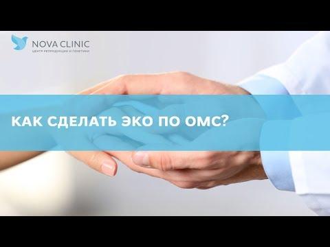 Как сделать ЭКО бесплатно по ОМС? Здоровая жизнь. - АиФ