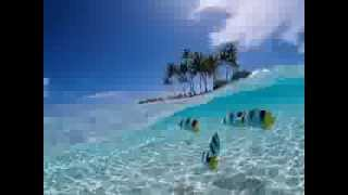 Download Video Objek Wisata Taman Nasional Bunaken Manado MP3 3GP MP4