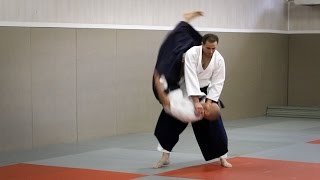 Guillaume Erard - Aikido Seminar in Paris (Cercle Tissier, June 2016)