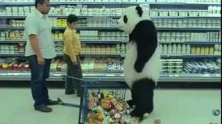 Hilariously Funny Panda Video Humar lol Laugh out load great video from Chemical Guys Labs