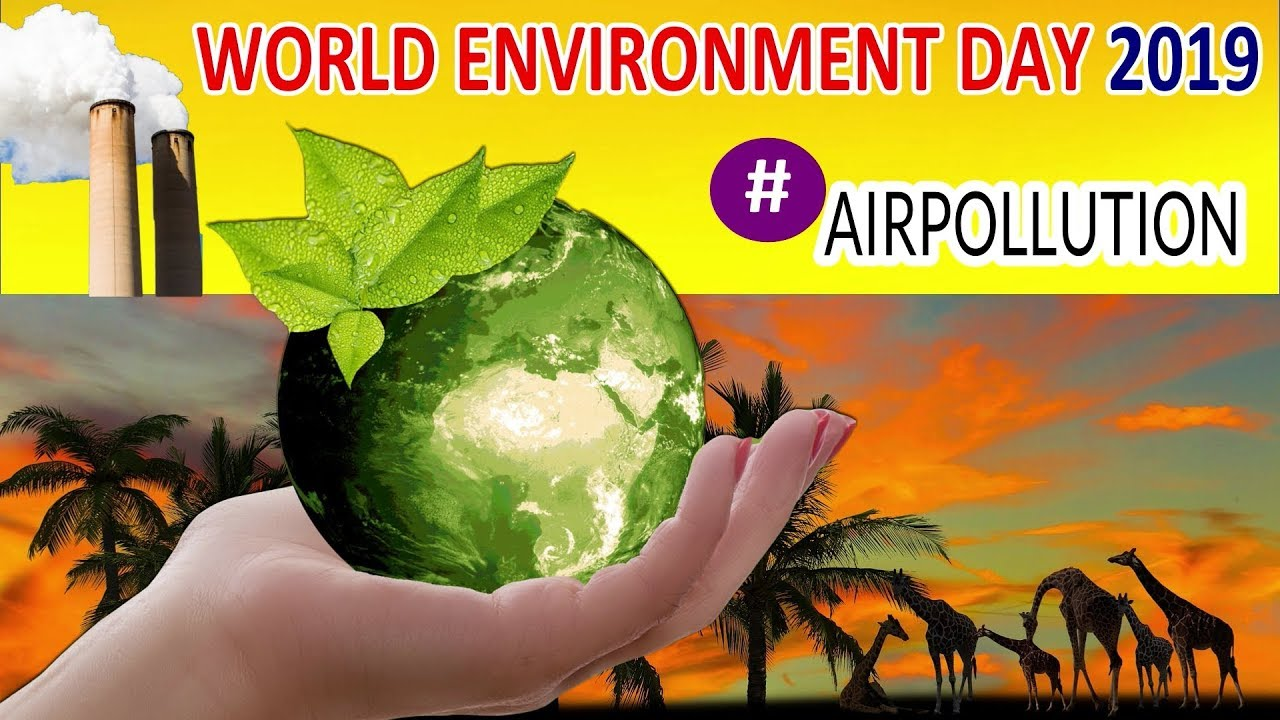 Image result for world environment day 2019