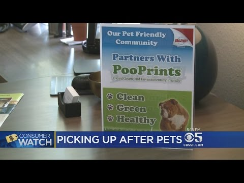 Milpitas Apartment Complex Keeps Pet Owners Honest With Doggie DNA Tracking